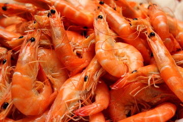 Poster Coquillage boiled Shrimp
