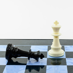 White King win black chess