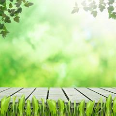 Wooden platform in grasss