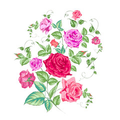 Roses branch, floral background.