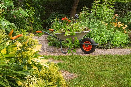 Cleaning up garden in summer