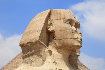 Wall Murals Egypt Sphinx of the Great Pyramid in Giza, unesco world heritage, Egypt