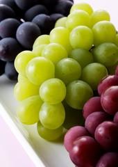 Grappoli di uva