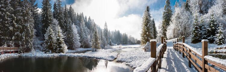 Fototapeta Панорама зимним утром в Карпатах