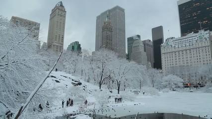 Fototapete - New York City Central Park in Snow