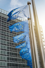 Wall Mural - European Union flags in front of the Berlaymont building (Europe