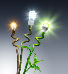 Wall Mural - bulbs in comparison - Halogen, Fluorescent and LED - on bamboo