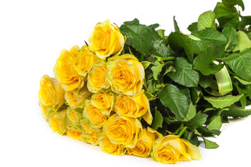 Group of fresh yellow roses