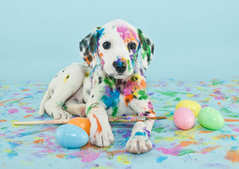 Wall Mural - Easter Dalmatain Puppy