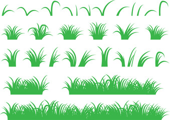 Green grass illustrated on white
