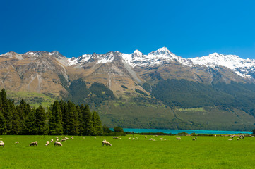 Fotobehang Nieuw Zeeland New Zealand mountains