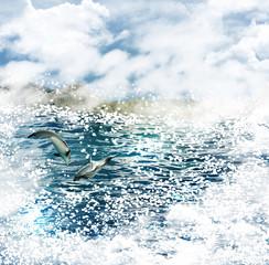 Sea dolphins.