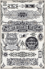 Vintage Hand Drawn Graphic Banners and Labels Vector