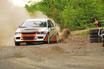 Poster Motorise Rally car in action - Mitsubishi EVO