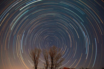 Polaris and star trails over the trees