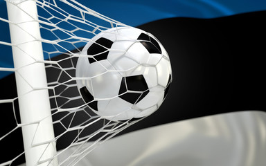 Flag of Estonia and soccer ball in goal net