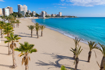 Wall Mural - Alicante San Juan beach of La Albufereta with palms trees