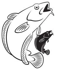 ling fish