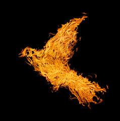 flame flying abstract bird isolated on black