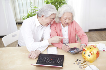 .Senior couple using laptop and calculator.
