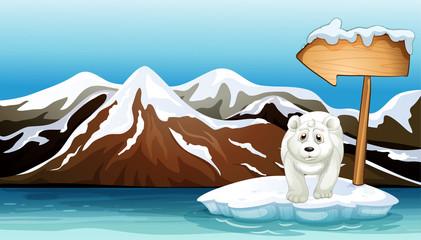 A polar bear above the iceberg with a signboard