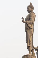 Isolate of a Thai Buddha