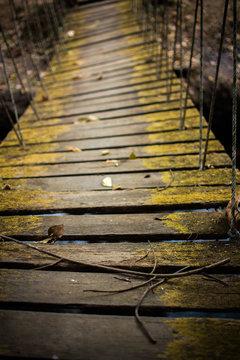 rope bridge in the jungle, thailand
