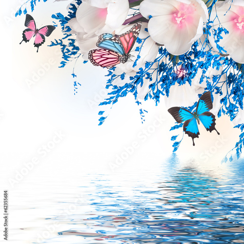 Fototapete White tulips with blue grass and  butterfly. Floral background.