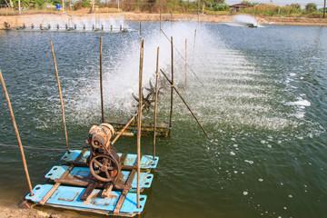 Aerator in the shrimp farm for fresh water