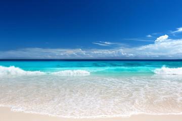 Wall Mural - seychelles beach