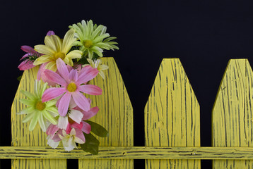 Spring flowers on a decorative fence