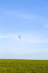 Flight of a kite in sky over a field