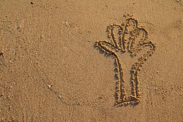 Single hand drawn on sand beach background