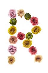 Rose font R