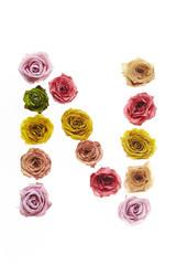Rose font N