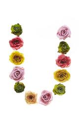 Rose font U
