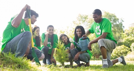Group of environmentalists planting