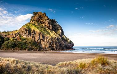 Wall Murals New Zealand Lion Rock (Piha Beach, New Zealand)