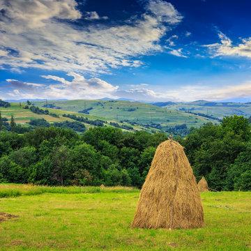 pair of haystacks and tree at mountain