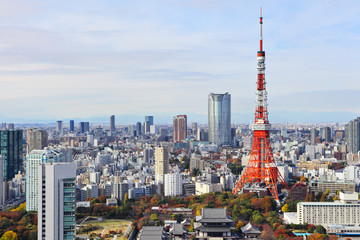 Staande foto Tokyo Tokyo cityscape
