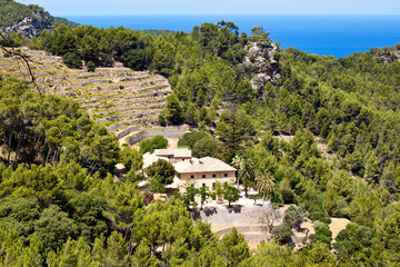Terrases in Banyalbufar in Majorca