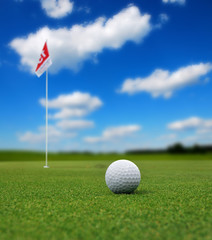 Golf ball in front of flag