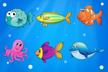 Sea creatures under the deep sea