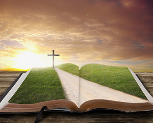Wall Mural - Open Bible with road.