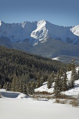Wall Mural - Summit County Winter