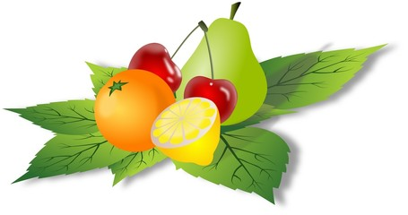 Simple colored fruits on green leafs
