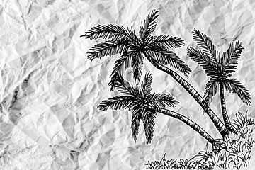 set of palm tree Tropical palm trees on crumpled paper