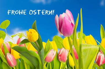 Frohe Ostern tulpen mit text