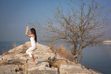 Beautiful young woman practicing yoga. Garudasana