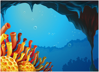 A beautiful view of the coral rees under the sea